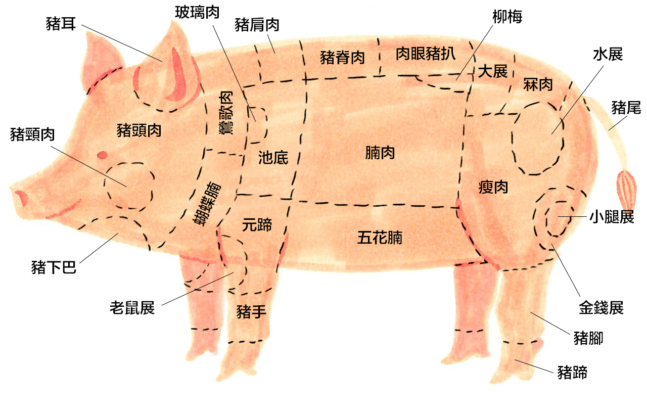 Swine Parts Diagram List - Basic Guide Wiring Diagram •