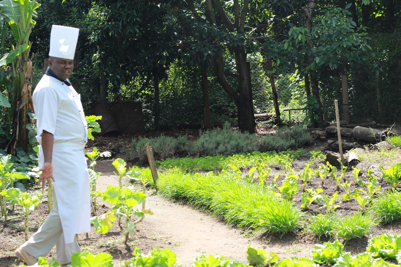 New gardens at Kichwa Tembo