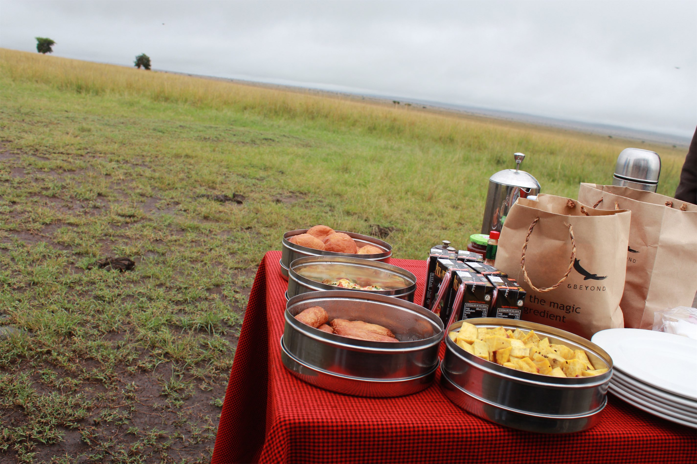 Breakfast spread in the middle of the Masai Mara