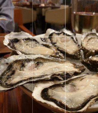 Oyster edited v1