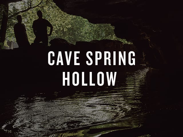Cave Spring Hollow