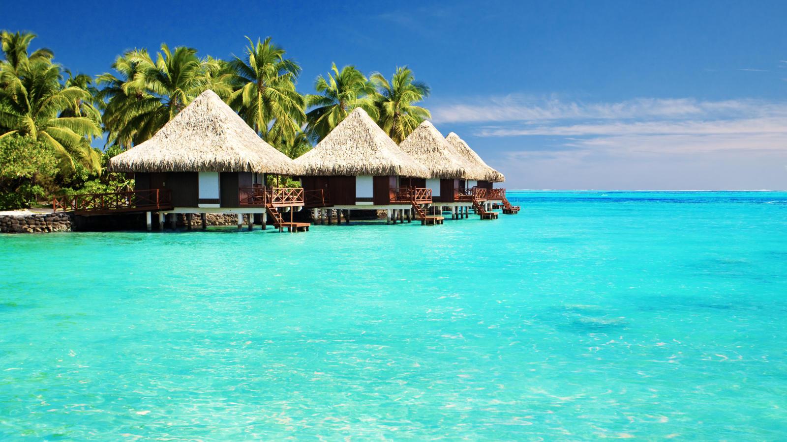 Vacaciones Maldivas - Última Hora Maldivas Holdiays