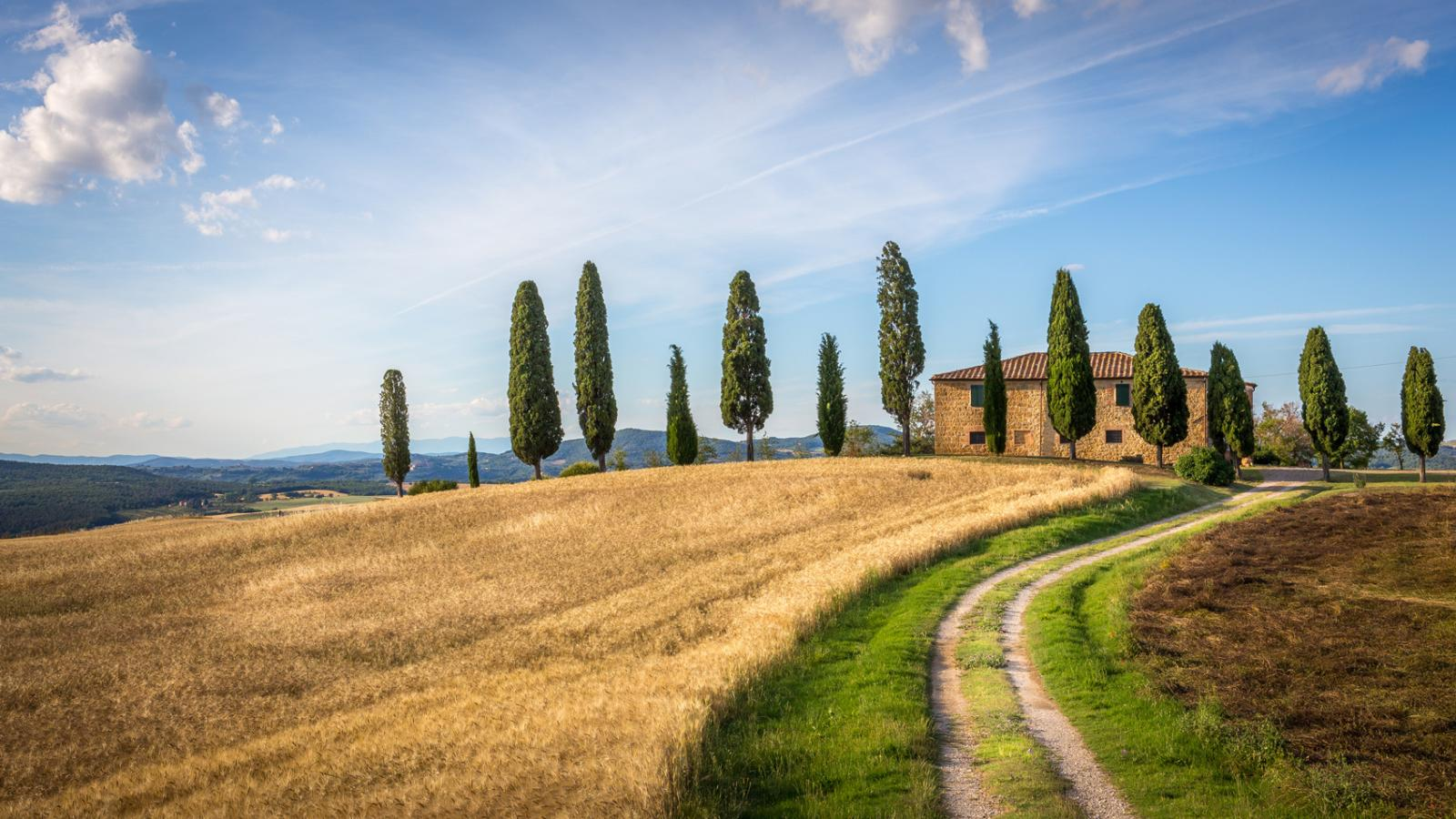 Tuscan Countryside Tour From Florence