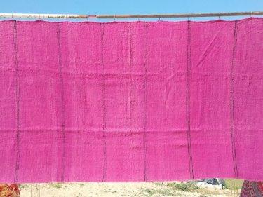 Pink, Black Btaniya Rug