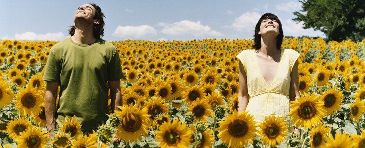 People in a field of sunflowers
