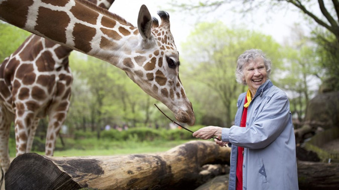 Still from The Woman Who Loves Giraffes