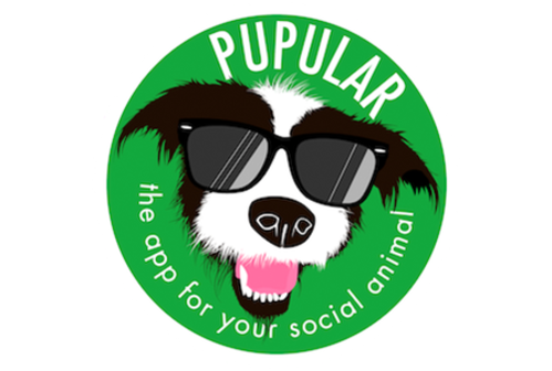 Pupular, founded by Harry Boileau