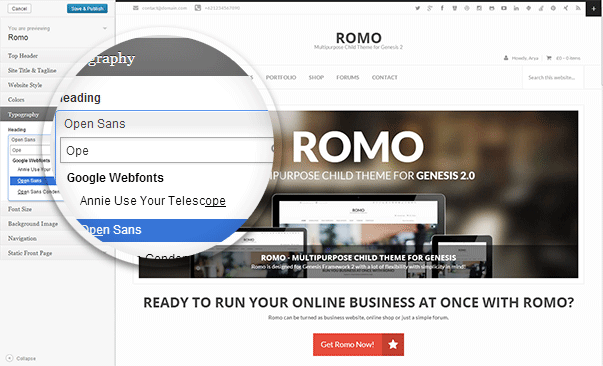 Romo - Theme Customizer