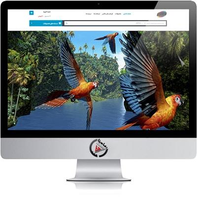 طراحی سایت فروش رنگ