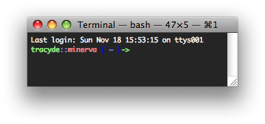 My Custom Bash Terminal