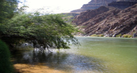 Discount Inner Canyon Tour to the Bottom of The Grand Canyon