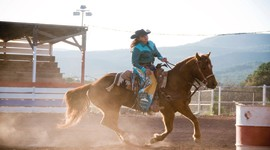85th Annual Navajo County Fair Rodeo and Little Buckaroo Rodeo