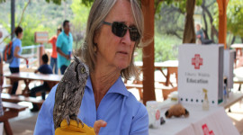 Raptors on the Rails with Liberty Wildlife - Apr. 1