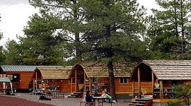 Williams / Circle Pines KOA Campgrounds & Cabins