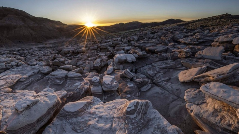 Petrified Forest National Park - Photo by Andrew Kearns
