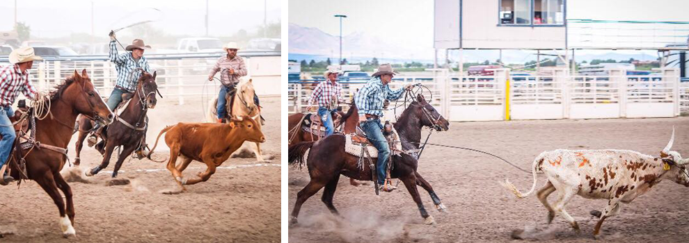 A team competes in the roping event with two different bulls.