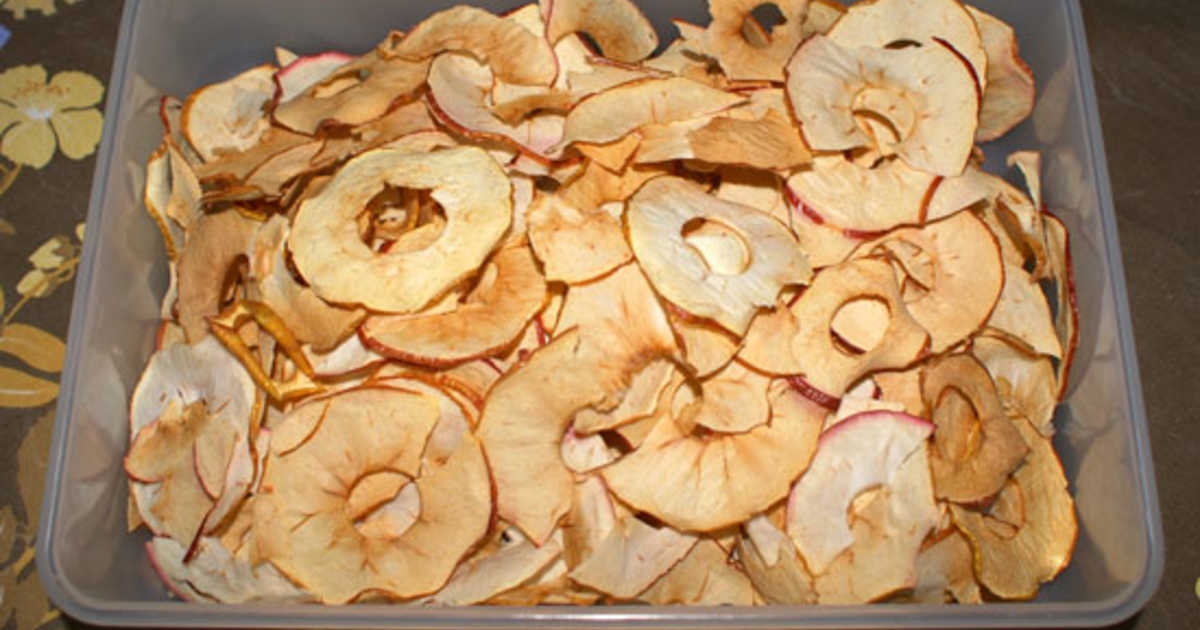 Torka äpplen i varmluftsugn
