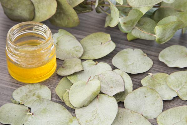 Eucalyptus Oil - Seasonal Allergy Hacks - The Wellnest by HUM Nutrition