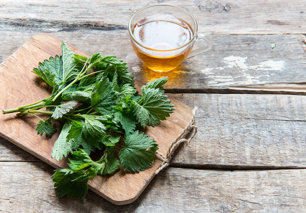 Stinging Nettle - Seasonal Allergy Hacks - The Wellnest by HUM Nutrition