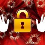 【実録シリーズ】営業が第一発見者!野立てケーブル盗難の実態とは?