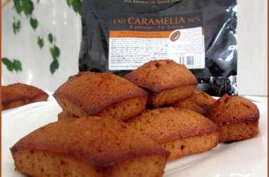 Mini financiers au chocolat Caramelia Valrhona