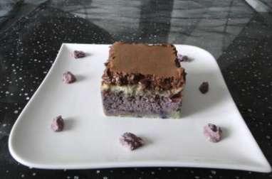 Mousse myrtille, mousse chocolat tonka sur biscuit de savoie