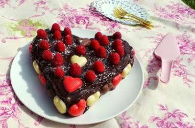 Gâteau moelleux au chocolat lait et framboises