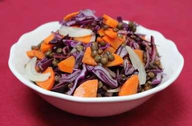Salade de lentilles vertes, chou rouge et carottes