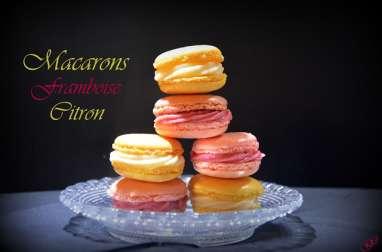 Macarons fruités