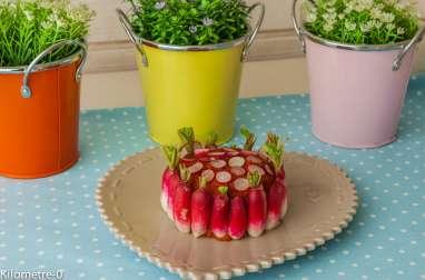 Chèvre à la tomatine et aux radis