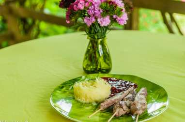 Aiguillettes de canard sauce au vin et aux framboises