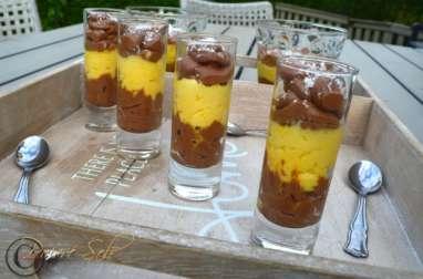 Mousse au chocolat à la mangue et noix de coco