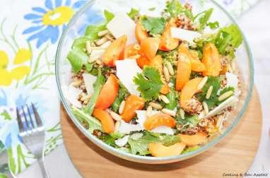 Salade de quinoa, abricots et grana padano