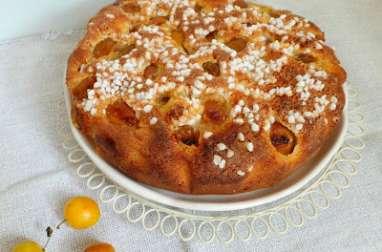 Gâteau gourmand aux mirabelles