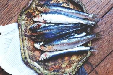 Galettes de sardine et velouté de brocolis