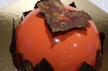 Dôme, insert confit framboises, bavaroise chocolat