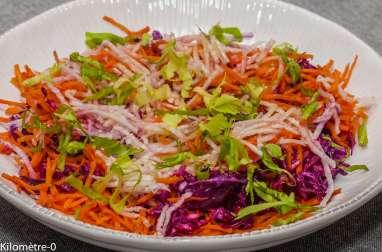 Salade de chou rouge, carotte et radis noir