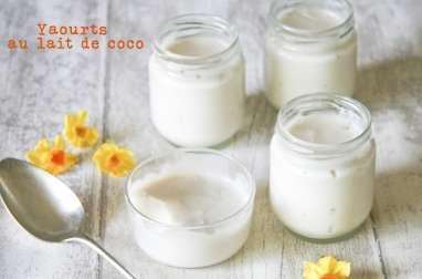 Yaourts au lait de coco