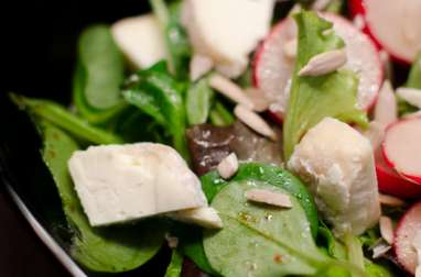 Salade de radis, de chèvre et de graines de tournesol