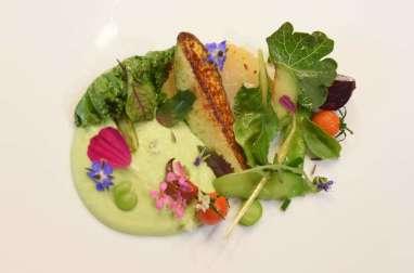 Légumes du potager, prémice d'été