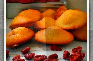 Madeleines aux canneberges