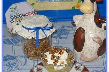 Coupes de Compote de Pommes et Yaourt à la Noix de Coco