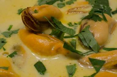 Velouté de moules au curry