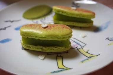 Macarons citron vert gingembre