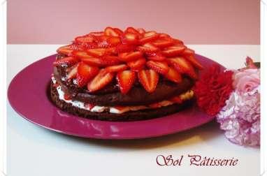 Gâteau au chocolat et aux fraises