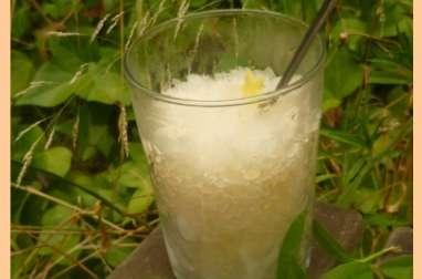 Granité verveine gingembre et citron vert