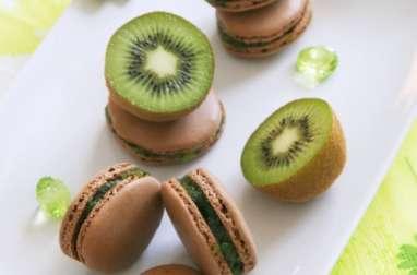 Macarons Impression kiwi