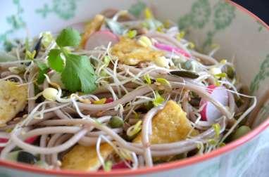 Salade printanière de nouilles soba aux graines germées, fèves et tofu sauté