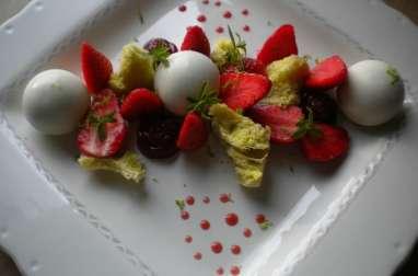 Un jardin de fraises
