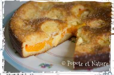 Gâteau croustimoelleux aux abricots et au chocolat blanc